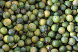 Calamansi Limes Background