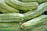 Bitter Melon  Closeup