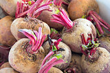 Beets or Beetroots Closeup