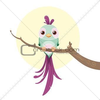 Cute pastel colored bird
