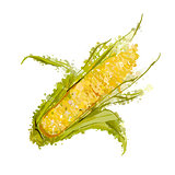 ear of corn vector