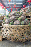 Pile of Pineapples in Big Basket