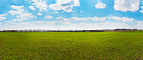 Panorama of green field and blue sky