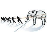 Elephant pulling