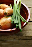 fresh onions green and shallot on a wooden background