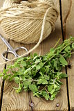 fresh organic oregano (marjoram) on a wooden board