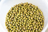 Green Whole Mung Beans