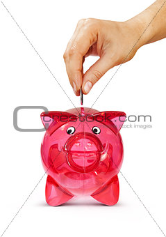 hand putting coin into piggy bank