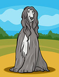 afghan hound dog cartoon illustration