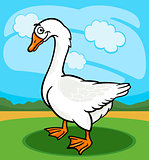 goose bird farm animal cartoon illustration