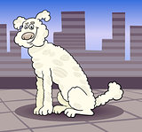poodle dog in the city cartoon illustration