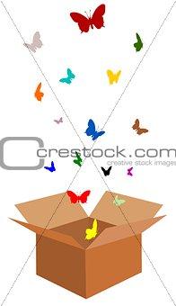 Box of Butterflies