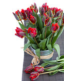 spring parrot tulip flowers