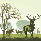 Deer and wildlife in autumn