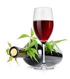 Wineglass and wine bottle with vine