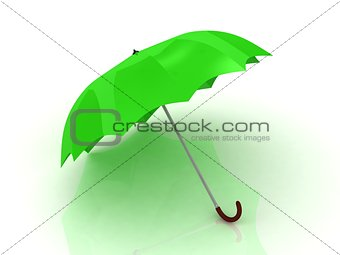 Green umbrella with wooden handle