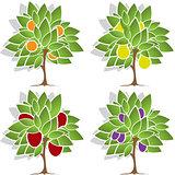 Four fruit trees