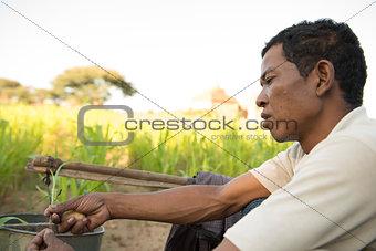 Portrait Traditional Asian male farmer
