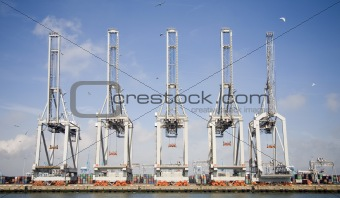 Harbor cranes 2