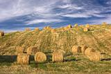 Hay bales standing ready to be collected