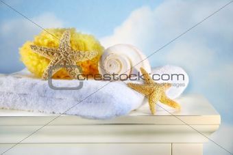 Sea shells and towel on cabinet