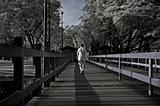 Infrared photo – man, wooden bridge and tree in the parks