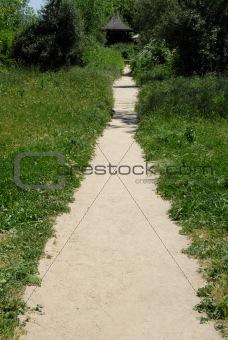 Foliage-lined path
