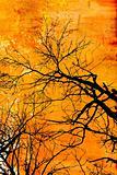 Grunge Tree design