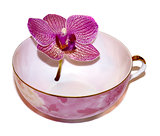 porcelain cup with flower