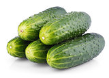 Group of cucumbers isolated on white