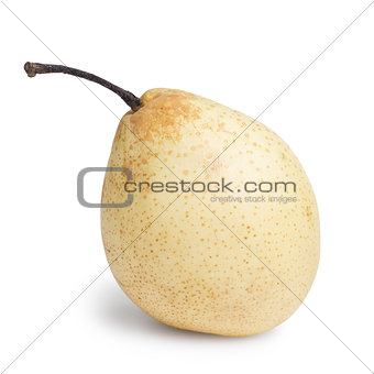 single nashi pear