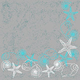 Vector card with shells and stars