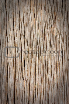 Wooden background.
