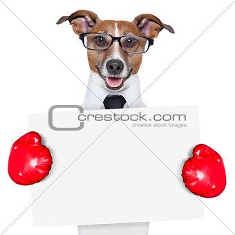 boxing banner dor