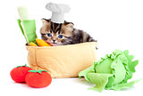 smiling cook kitten with toy vegetables isolated