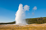 Eruption of Old Faithful geyser at Yellowstone National Park,USA