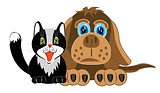 Dog and cat on white background