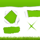 Green Torn Paper Set