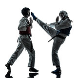 karate taekwondo martial arts man woman couple silhouette