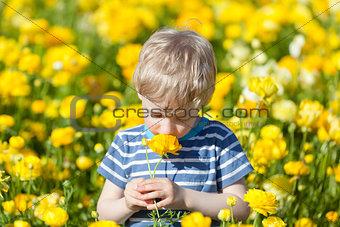 boy at flower field