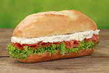Sub sandwich with smoked salmon