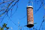 Bird feeder full of peanuts hanging against a blue sky