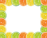 fresh citrus fruits background