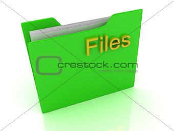 Green computer folder and yellow sign Files