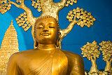 Golden Buddha statue