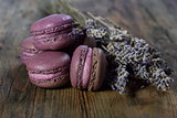Lavender macaroons.