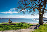 Lake Starnberg with bench