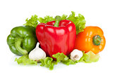 Colorful bell peppers with garlic and lettuce