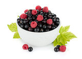 Black currant and raspberry in bowl