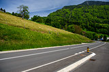 road at the lake Lucerne